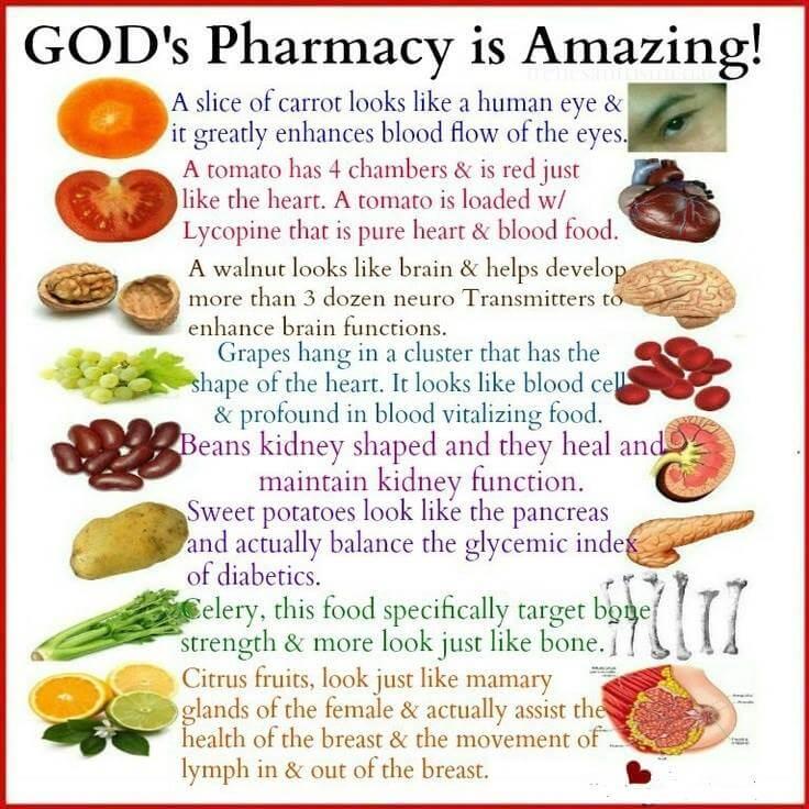 God s pharmacy is amazing diabetic health clinic for God s garden pharmacy